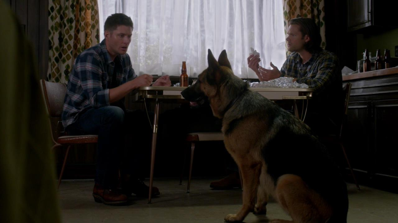 https://thewinchesterfamilybusiness.com/images/CaptionThis/SPN_09x05.jpg