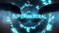 The WFB Supernatural Season 14 Fan Choice Awards - Vote Now!