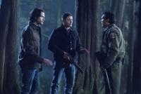 "Let's Speculate: Supernatural 14.16 ""Don't Go Into the Woods"""