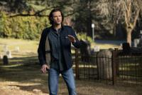 Let's Speculate: Supernatural 14.20